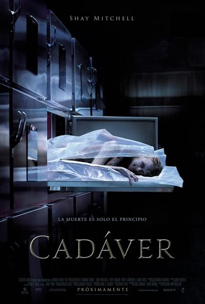 Cadáver (cartel)