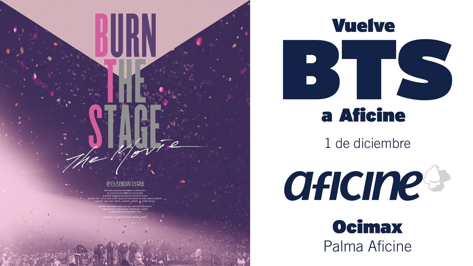 Vuelven a Aficine!!<br>Burn The Stage The Movie